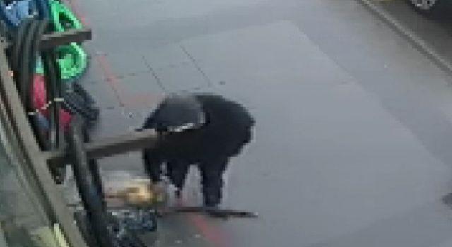 Hızar makinesi çalan şüpheli güvenlik kamerasına yakalandı