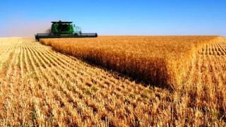Tarımsal Üretim Fiyatlarındaki Artış TÜİK'e Göre %28,74